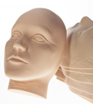 Permanent Make-up Übungsmaterial: Kopf